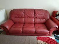 Sofa - Iconic Pure Leather Three Seater Sofa