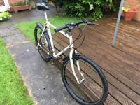 Classic 90s Raleigh mirage exage trail ensemble bike 26 in wheel gwo Reynolds 501 frame