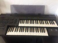Electric yammer organ