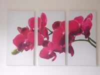 Canvas Wall Art Picture - 3 parts - Orchid Floral Flower as new