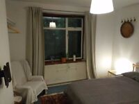 Double bedroom with garden in Colliers Wood. New Carpet, Curtains & furniture.