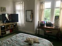 Huge Bedroom perfect for couple/single