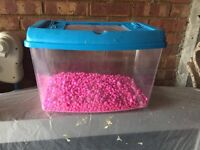 Small fish/reptile tank with gravel
