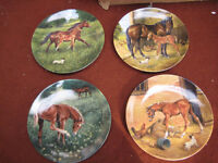 Collectable Plates. Set of Tomorrows Champions Limited Edition 4 Horse Plates by Donna Crawshaw.