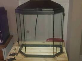 Hexagon shaped fish tank in with led lights