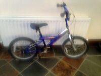 Boy's Golrush Blaster bike
