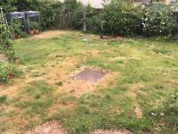 Help with lawn wanted (Gardener)
