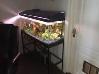 Fish Tank 48inch by 18 inch by 15 inch approximately with Metal stand a further 28 inches high