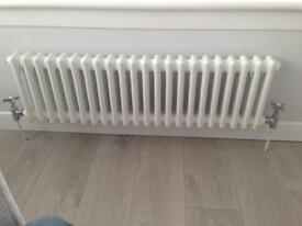 TRADITIONAL RADIATOR 300(h)1000(w)DOUBLE PANEL