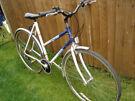 raleigh pioneer tall ladies retro bike