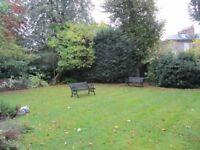 Beautiful room 5 mins from Upper Street, Islington