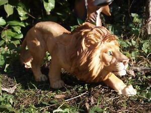 Löwe schleichend  Figur Wildtiere Gartendeko lebendsecht Afrika Raubkatze