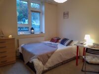 Gorgeous room in Marylebone, Available right now, perfect for couples !! real pics
