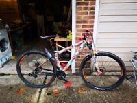 Custom built mountain bike