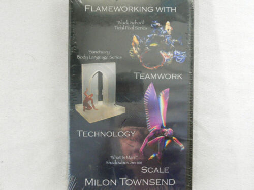 VHS Flameworking with Milon Townsend Tidal Pool Body Language Shadowbox NEW
