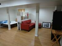 Recently renovated pet friendly basement bachelor suite