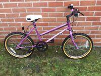 Girls Universal Bike
