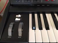 Moog Voyager Electric Blue (New with 3y warranty)