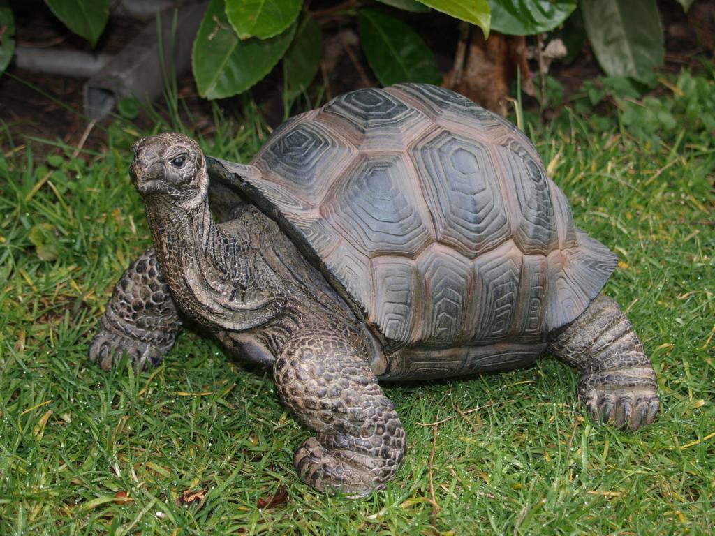 Schildkröte Figur groß 46cm naturgetreu lebensecht GARTENFIGUR GARTEN DEKO NEU