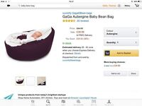 Baby Bean Bag 0-6 months