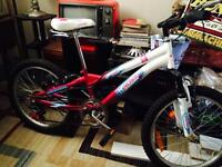 "Girls 20"" mountain bike"