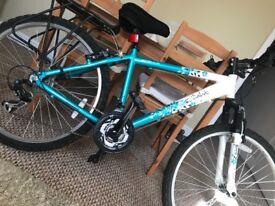 Girls mountain bike 21 gears .. Apollo twighlight
