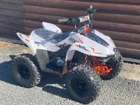 Brand new Kayo 70cc
