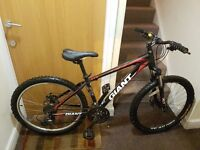 Gaint mountain bike with 26 inch wheel size.