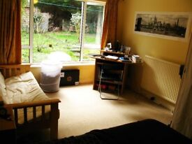 2 bedroom house share to rent CT1