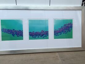 'Trilogy of Fish' Painting. Mounted and Framed. 150cm wide x 72cm high
