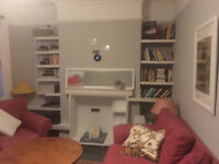 Beautiful room in a lovely big flat share. Perfect for professionals/couples