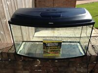 Aquael Bow Front Fish Tank - 100 litres and 'Freshwater Aquariums for Dummies' Book