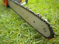 CHAINSAW - 18 inch - 45cc - GWO - £65