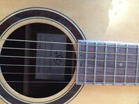 sx custom dg50 guitar