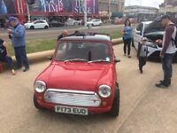 Classic Mini, very fast, reluctant sale
