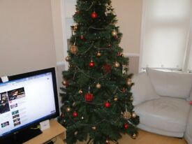 Christmas Tree (7ft 6in-228cm) + gold/red baubles, 2 strings of lights, gold beading.