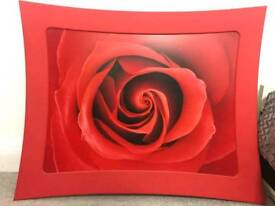 Wall frame rose