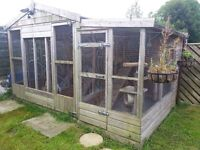 Cattery/Kennel – Quality Wooden Chasse Chalets with gauge wire consisting of 3 x runs
