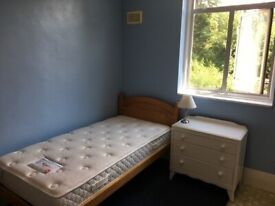 Acton W.3. - single room to let