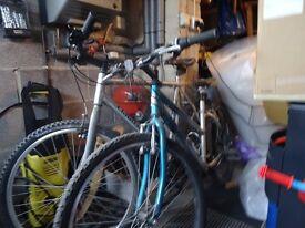 Ladies and Gents bikes