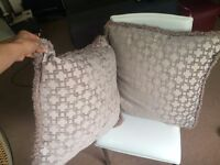 Belmont feather filled silver cushions