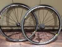 2015 Mavic Aksium Bike Wheels (Wheelset), 23mm YKS Mavic comp tyres, skewers & freehub