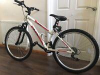 Mountain Bike (UNUSED)