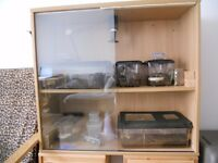 Full set up, cabinet and tarantulas with enclosures including hides and water dishes.