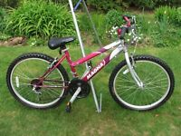 Girls Mountain Bike 24in Frame 15in Frame 15 Gears In Excellent Condition