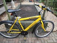 Synergy 400 Bicycle Suitable for an adult or teenager