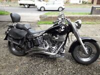 Harley Davidson Fatboy, 08, black vgc,stage1,loads of extra's for sale or deal on WILLY JEEP.