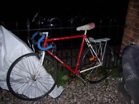 Traditional, stylish racing bike. Works well. Much easier to cycle in town than a mountain bike.