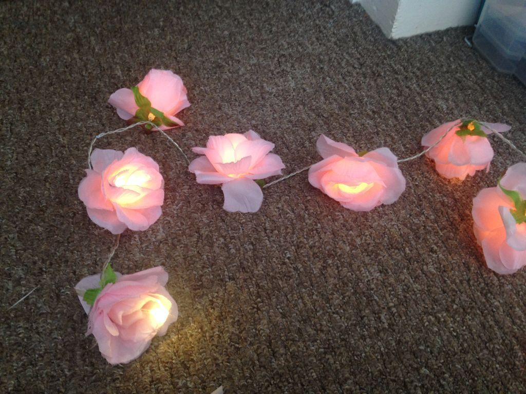 Next Pink Rose Fairy Lights In Nottingham City Centre
