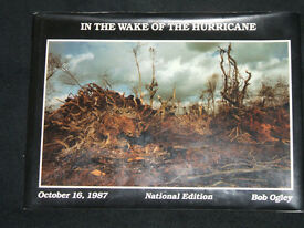 IN THE WAKE OF THE HURRICANE 1987